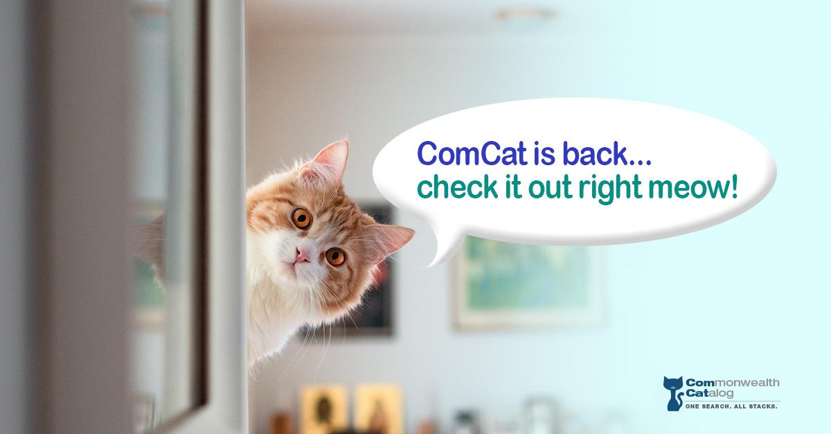 ComCat is Back Cat Graphic